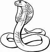 Coloring Pages Snake Cool Snakes Kaa Jungle Boys Printable sketch template