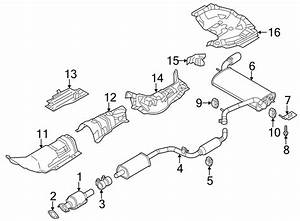 Ford Focus Exhaust Manifold Heat Shield  Emissions  Dohc