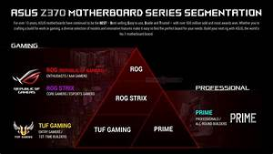 Asus Motherboard Segmentation Explained
