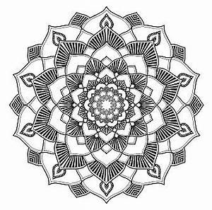Mandala Malbuch Fr Erwachsene 50 Wunderschne