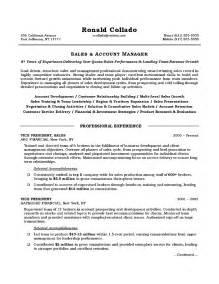 sle resume exles vice president of sales resume