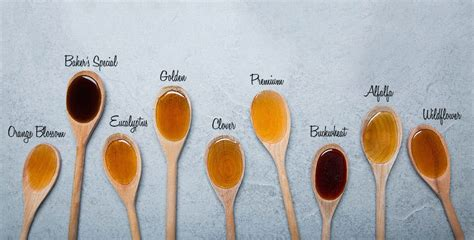 different types of kitchen knives and their uses color of honey 28 images how to choose the best honey