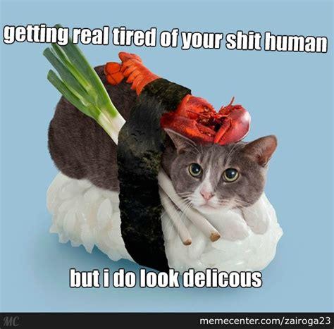 Tired Cat Meme - tired cat memes image memes at relatably com