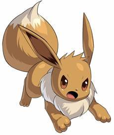 pokemon profiles all about eevee