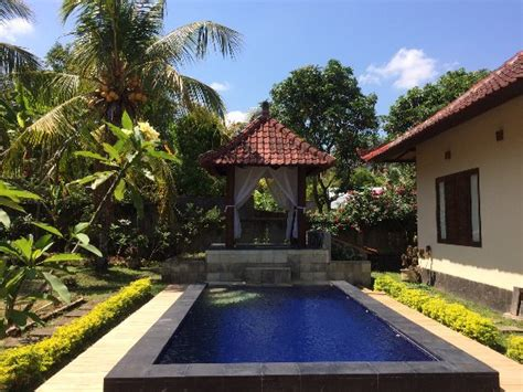 cottage bali lafyu bali cottage indonesia singaraja reviews