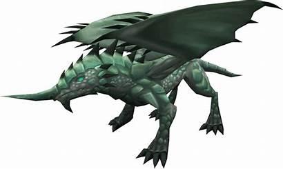 Dragon Runescape Adamant Wiki Dragons