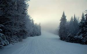 Landscape, Photography, Nature, Snow, Trees, Road, Wallpapers, Hd, Desktop, And, Mobile, Backgrounds