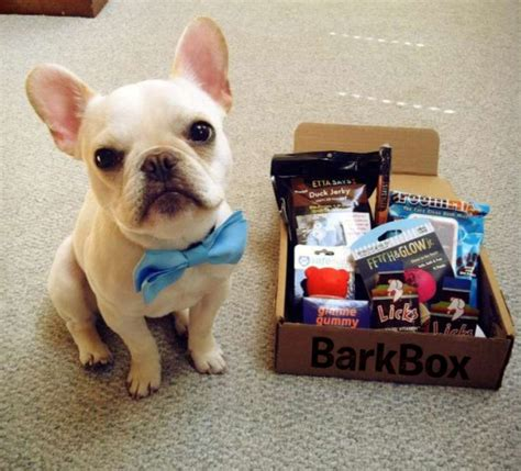 gifts  dogs barkbox subscription boxes cheap