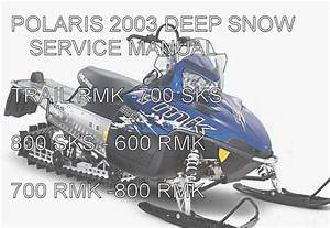 Polaris Snowmobile Deep Snow Service Manual 2003