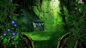 Fantasy Forest Wallpaper - WallpaperSafari