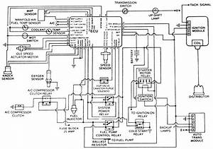 jeep renix vacuum diagram jeep auto wiring diagram With diagram additionally 1988 jeep anche fuse box diagram in addition 2000