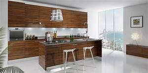 Modern rta cabinets for Furniture kitchen cabinets