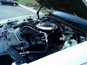 Sell Used 1986 Chevrolet Monte Carlo Ss 305 Ci V8 Auto 23k