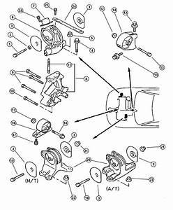 Chrysler Sebring Bracket  Engine Roll Dampener