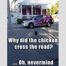 Solved! Why Did The Chicken Cross The Road? Majorgeeks