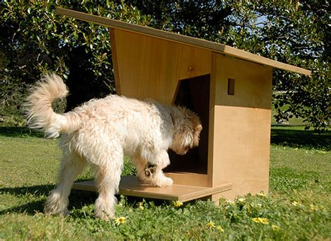 Burkes Backyard Dogs by Cool Kennels Indesignlive Daily Connection To