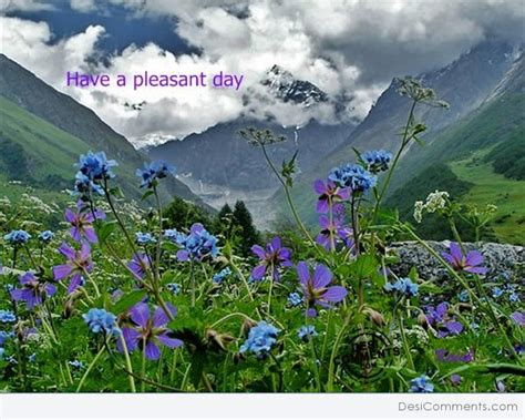 pleasant day desicommentscom