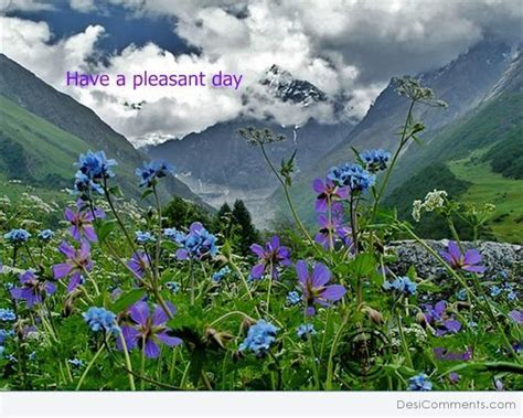 Have pleasant day   DesiComments.com