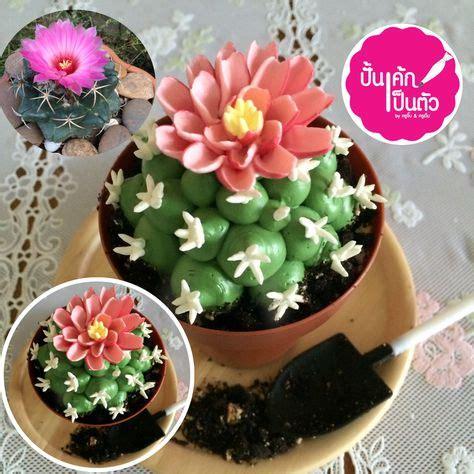 ไอเดีย แคคตัสเค้ก cake cactus 24 รายการ | เค้กดอกไม้, คัพเค้ก, เค้ก