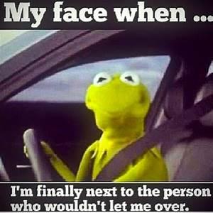 Kermit Driving My Face When | www.pixshark.com - Images ...
