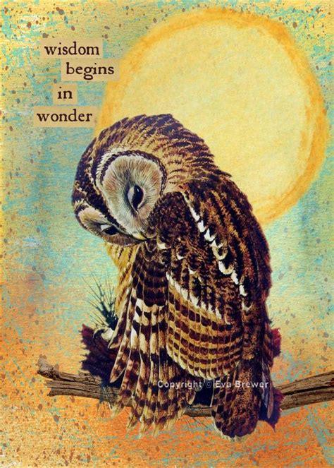 owl collage art original digital  supplies print