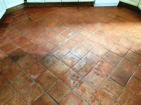 terracotta floor tile terracotta tiles and grout cleaned and sealed in