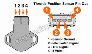 Accelerator Pedal Position Sensor Wiring Diagram  Parts