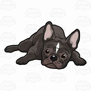 French Bulldog Lying Down With Its Head On The Floor ...