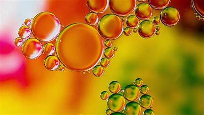 Liquid Bubbles Transparent Colorful Macro Hdv 720p