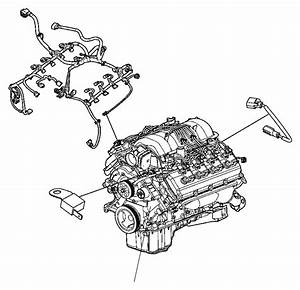 Jeep Grand Cherokee Wiring  Jumper  Multiple Displacement