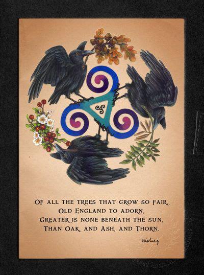 raven triskele celtic pagan druid  age blank book