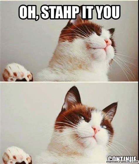 Meme Oh Stop It You - oh stop it you cat