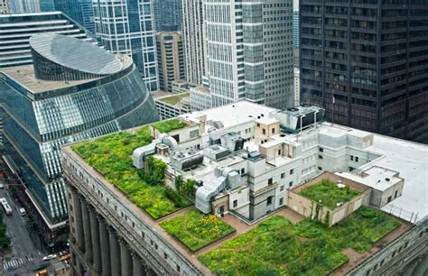 episode 122 green roofs rooftop gardens growing a