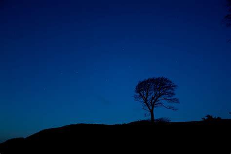 Northumberland Becomes A Dark Sky Park Looking Up Medium