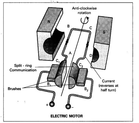 Electric Motor Diagram by Draw A Neat Diagram Of Electric Motor Name The Parts