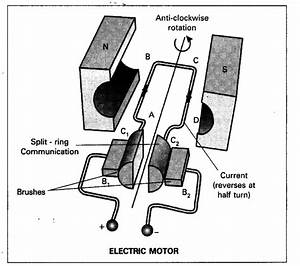 Draw A Neat Diagram Of Electric Motor  Name The Parts - Cbse Class 10 Science