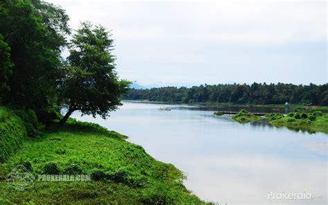 kerala river bank wallpaper