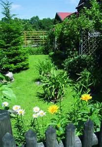 Pflanzen Für Schattige Plätze : pflanzen f r schattige pl tze im garten ~ Orissabook.com Haus und Dekorationen