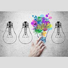 10 Locas Ideas De Negocio Rentable Que Alcanzaron El éxito