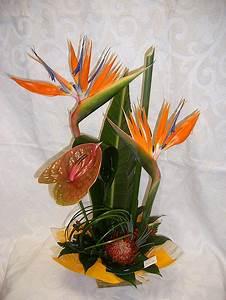 Composition Fleurs Séchées : composition florale fleur sechee pivoine etc ~ Teatrodelosmanantiales.com Idées de Décoration