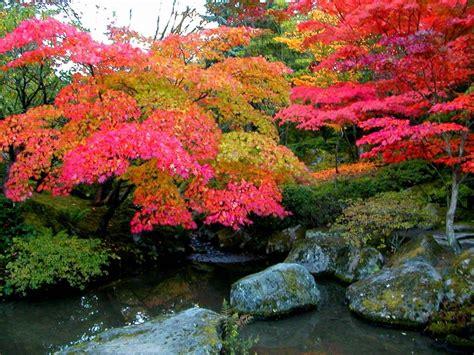 landscaping image spring landscape seasons pinterest