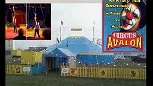 circus, avalon, stars, in, der, manege, -, ein, circus, juwel