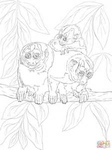 Night Monkey Coloring Pages