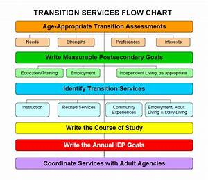 Transition Flow Chart