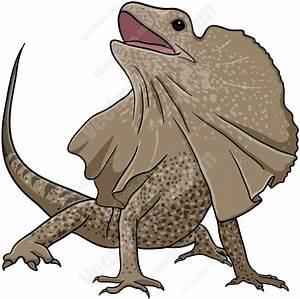 Brown Frill Necked Lizard | Lizards