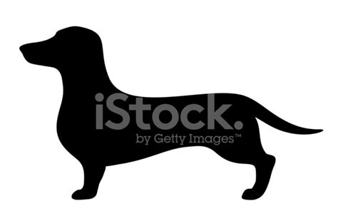 腊肠狗。矢量黑色剪影。 Stock Vector - FreeImages.com