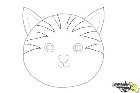 draw  cat face drawingnow