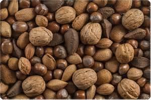 Peanut Tree Nut Allergies