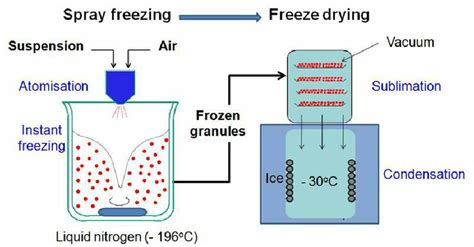 Freezig Diagram Of Liquid by Schematic Of The Freeze Granulation Freeze Drying Process