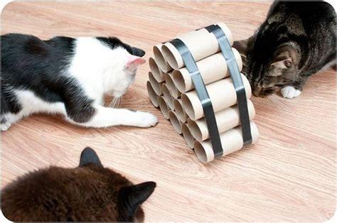 cat puzzle feeder best 25 cat toys ideas on diy cat toys diy